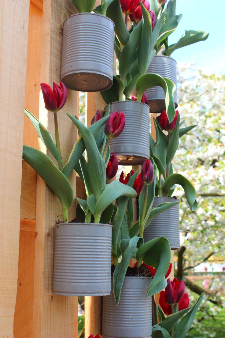 Come decorare casa con i bulbi