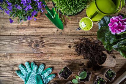 Giardino di casa, ecco come curarlo in ogni stagione