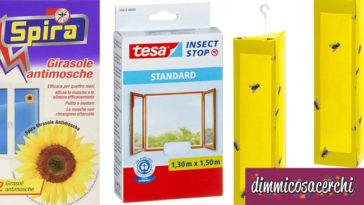 Come eliminare le mosche da casa