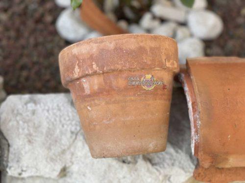 Come pulire i vasi di terracotta